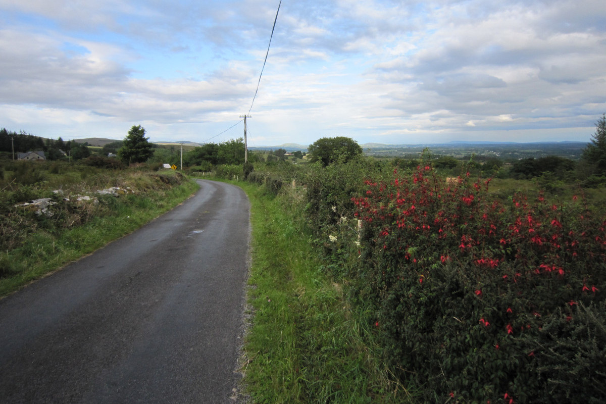 Aclare Road and Forest Walk