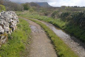Rinroe Walk