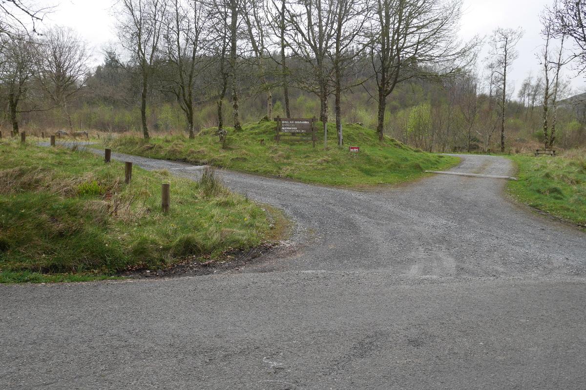 Glenwood Forest