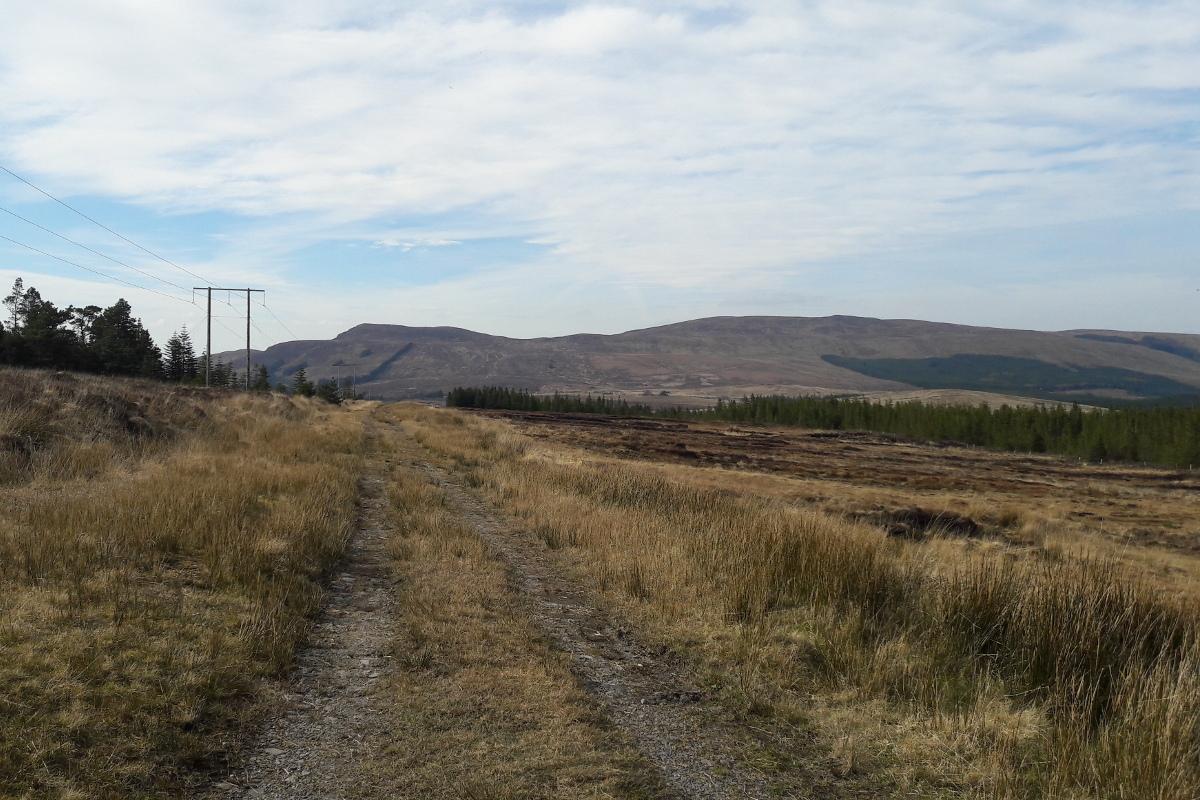 Lough Talt - Gorterslin Road