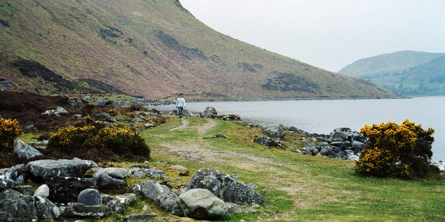 Lough Talt Shoreline
